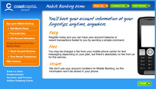 SMS Banking Demo example image 1